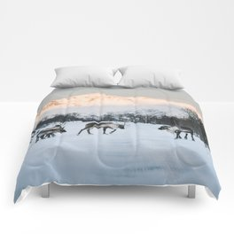 Roadblock - Landscape and Nature Photography Comforters