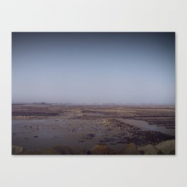 Without water Canvas Print