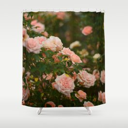 Flores de julio en Madrid Shower Curtain
