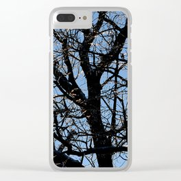 icy tree Clear iPhone Case