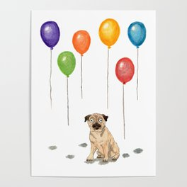 Pug with balloons Poster
