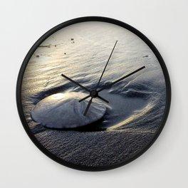 Sand Dollar Wall Clock