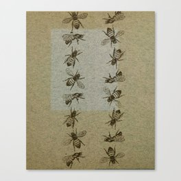 Bee Line Canvas Print