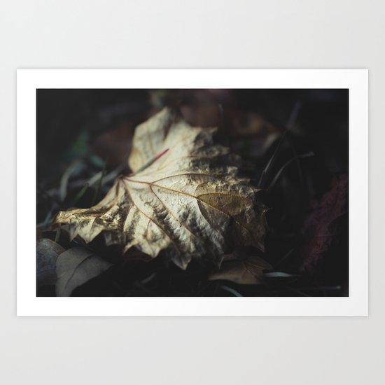 Of Gold Art Print