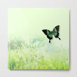 Green Butterfly, Wildflower Meadow, Summer Field Metal Print