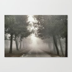 Mystery road.... Canvas Print