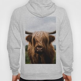 Scottish Highland Cattle in Scotland Portrait II Hoodie