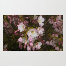 Pink and White Cherry Blossoms Rug