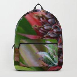 Perfect Pineapple, Puerto Vallarta, MX Backpack