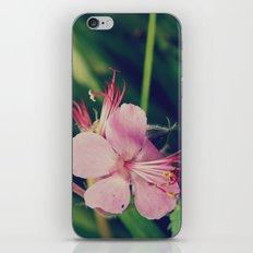 Star Flower iPhone Skin