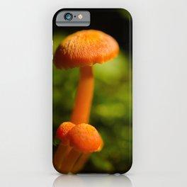 Orange Button Top Mushrooms Nature / Botanical Photograph iPhone Case