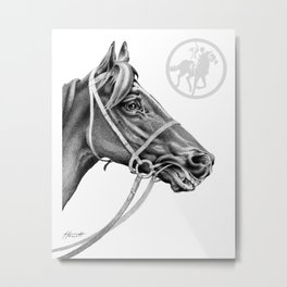 Veloso Racehorse NZ Metal Print