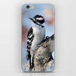 Woodpecker iPhone Skin