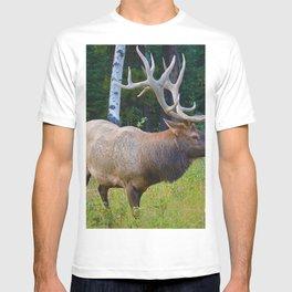 Bull Elk shows off his rack in Jasper National Park T-shirt