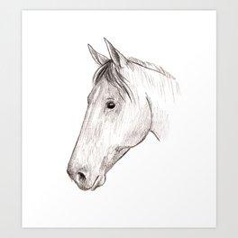 Horse 01 Art Print