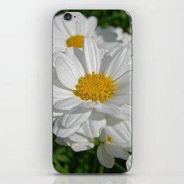 beauty daisy iPhone Skin