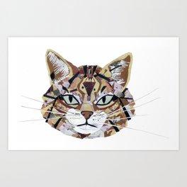 Scottish Wild Cat Art Print