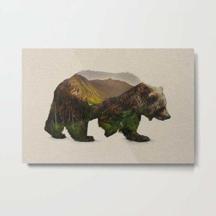 North American Brown Bear Metal Print