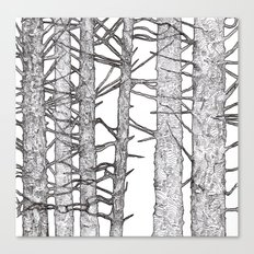 Black & White Trees Canvas Print