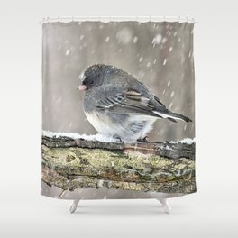Once Upon a Snow Bird: Junco Shower Curtain