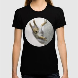 Squirrel - Who are you? T-shirt
