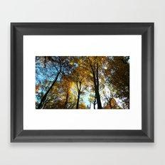 Sky View Framed Art Print