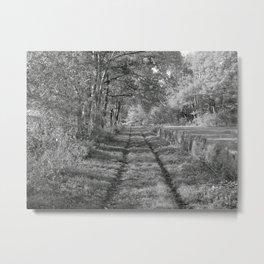 """autumn 4950""   Metal Print"