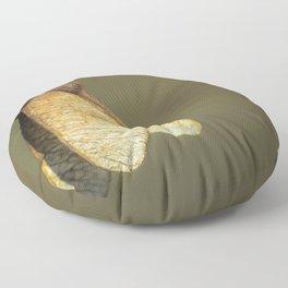 Samaras #1 Floor Pillow