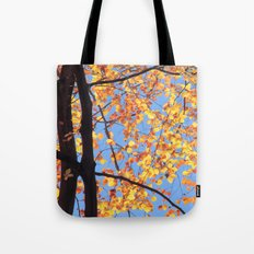 Sunlit Beeches in Autumn Tote Bag