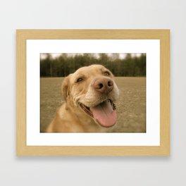 Dog Gone Happy Framed Art Print