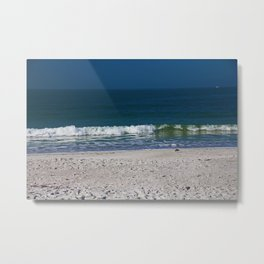 The Sandpiper and the Sea Metal Print
