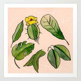 Plants & Constellations Art Print