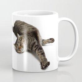 Adorable Tabby Cat Stretching Coffee Mug