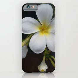 Fragrance of Hawaii iPhone Case