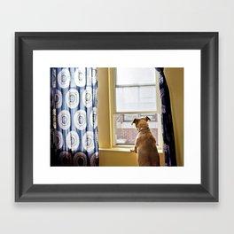 Penny Lane Framed Art Print