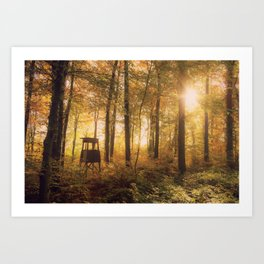 In #autumn, through the #forest Art Print