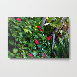 Red and green power of nature Metal Print