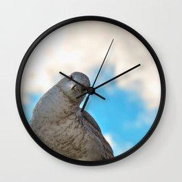 Curious Seagull Wall Clock