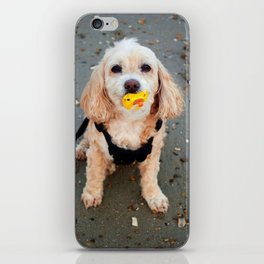 Every Dog is a Baby iPhone Skin