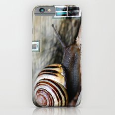 Snail :: Room with a View Slim Case iPhone 6s