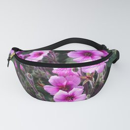 Beauty on The Rock Fanny Pack
