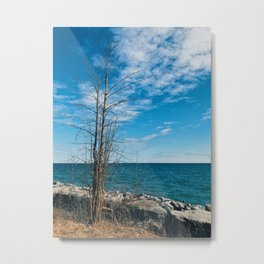 On the shore I stand Metal Print
