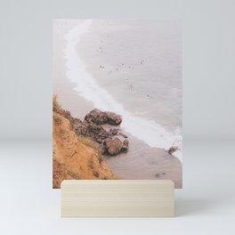 Laguna beach Mini Art Print