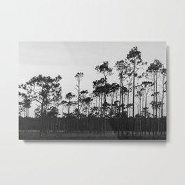 Into The Wood Metal Print