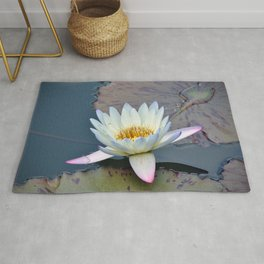 Water Lily in Pond Rug