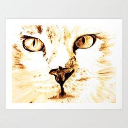 Cat with an attitude Art Print
