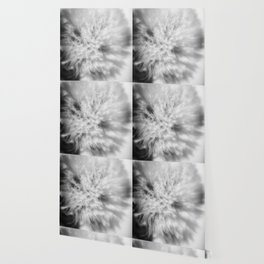 Sign of Winter a sow thistle weed covered in frost Wallpaper