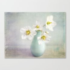 lovely Helleborus Canvas Print