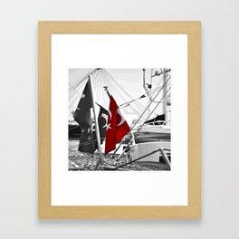 Flag of Turkey - Selective Coloring Framed Art Print