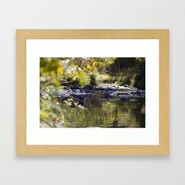 Creekside View Framed Art Print
